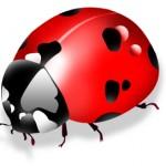 PortfolioCenter Bug